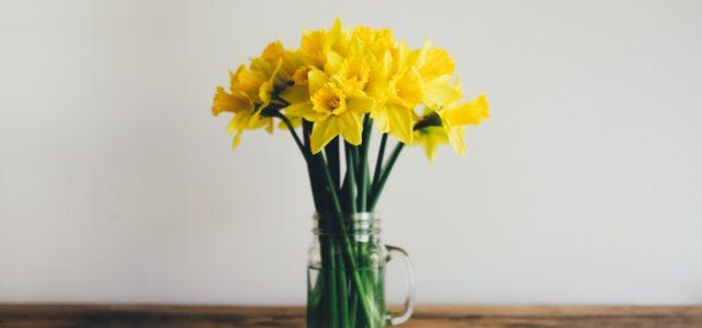 De lente komt eraan!